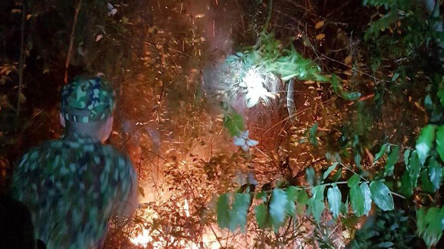 Bộ đội giúp dân dập tắt đám cháy rừng tại xã Vĩnh Thực, TP Móng Cái