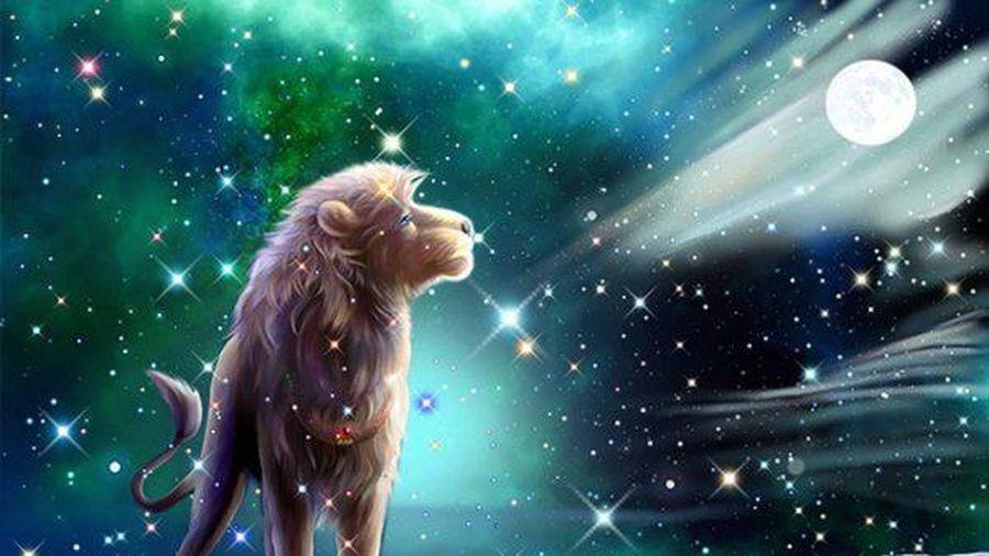 Ngày 21/10 của 12 cung hoàng đạo: Sư Tử mệt mỏi vì bị người yêu kiểm soát