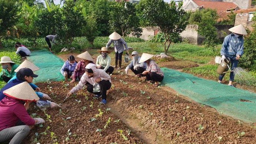 Mở rộng cơ hội việc làm cho lao động nông thôn