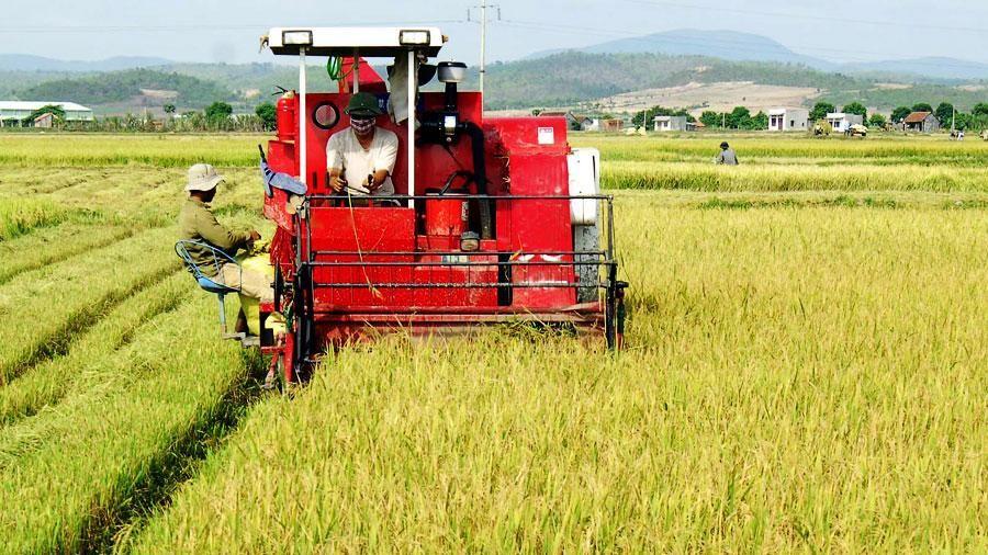 Giải ngân 69 tỷ đồng cho vay đầu tư cơ giới hóa nông nghiệp