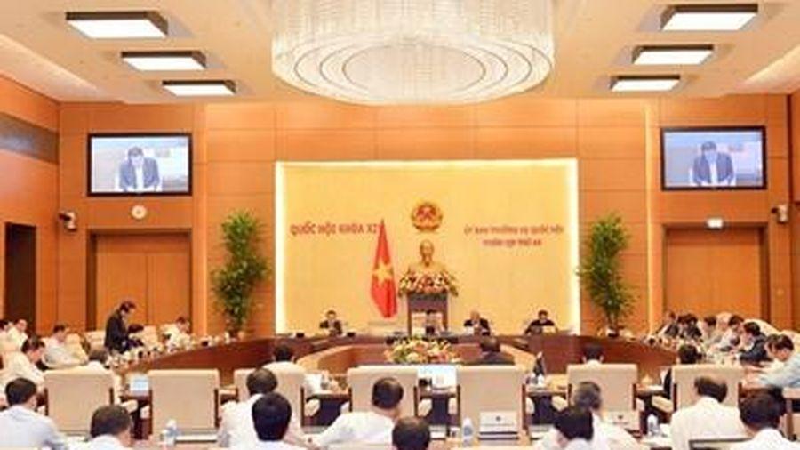 Bổ sung 274 tỷ đồng từ ngân sách Trung ương để mua bù gạo dự trữ quốc gia