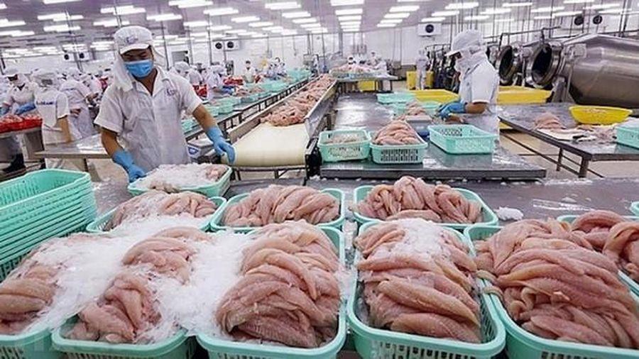 Xuất khẩu tôm tăng mạnh, cá tra sụt giảm