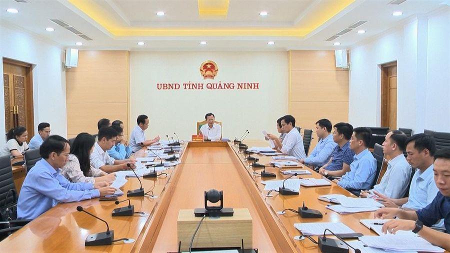 UBND tỉnh họp giải quyết kiến nghị phức tạp, kéo dài tại Vân Đồn