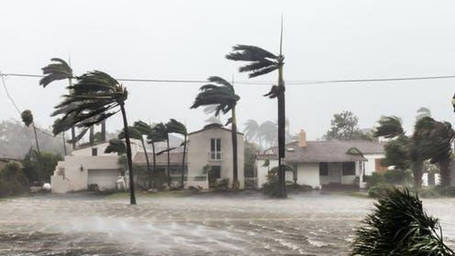 Diễn biến bão số 8: Gió giật mạnh lên cấp 14
