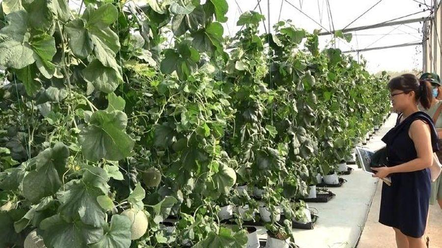 Nông nghiệp Việt Nam tiếp tục kỳ vọng lớn vào EVFTA