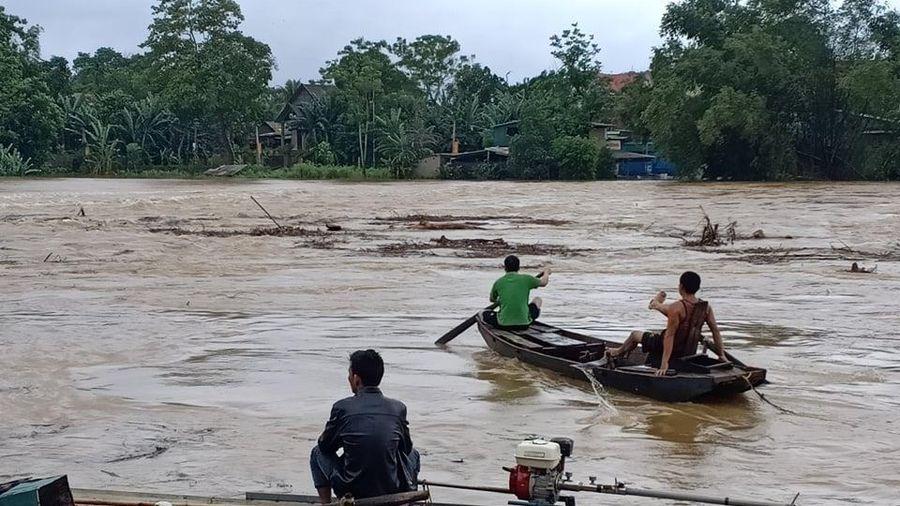 Bất chấp lệnh cấm, nhiều người dân vẫn liều mình vớt củi trên sông Ngàn Phố