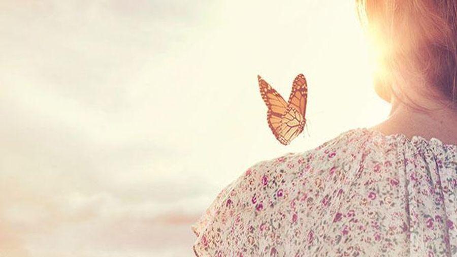 Mọi thứ bắt đầu từ duyên phận, kết thúc cũng lại do duyên phận