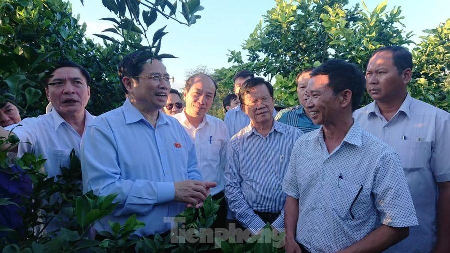 Trưởng ban Tổ chức Trung ương: Phải xử lý pin mặt trời sau khi kết thúc dự án