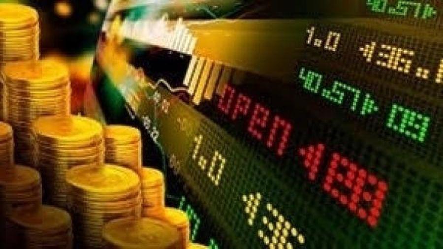 Tin nhanh TTCK ngày 20/11: Nhà đầu tư tự tin 'xuống tiền' – VN Index đạt 990 điểm