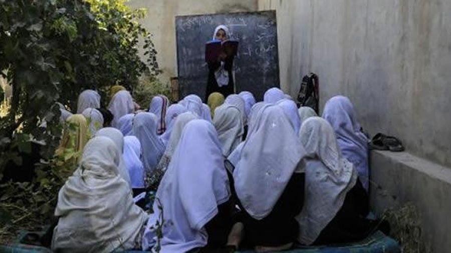 Đằng sau 'cuộc khủng hoảng giáo dục' của Afghanistan