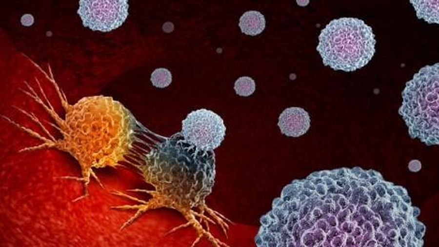 Điều trị ung thư hiệu quả bằng công nghệ chỉnh sửa gene