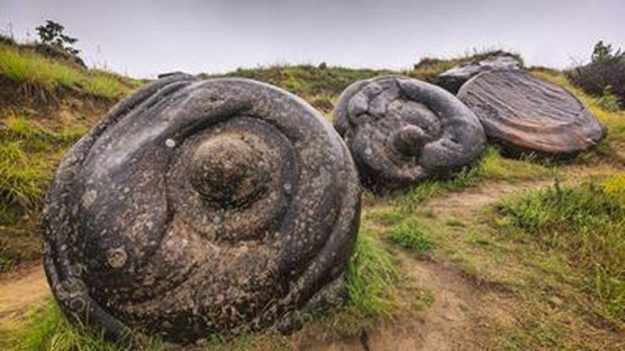 Ly kỳ loài đá độc nhất vô nhị có thể mọc như nấm ở của Romania