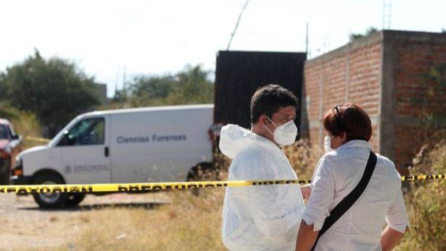 Khai quật ngôi mộ tập thể với 113 thi thể không nguyên vẹn ở thành phố ma túy