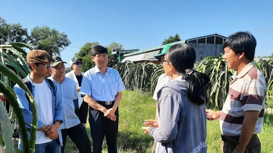 Dự án VCED sẽ tiếp tục hỗ trợ các hợp tác xã Việt Nam mở rộng thị trường xuất khẩu