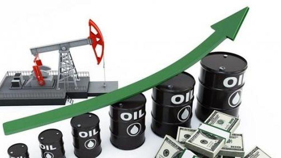 Giá dầu tăng vọt nhờ tin tích cực từ vaccine Covid-19