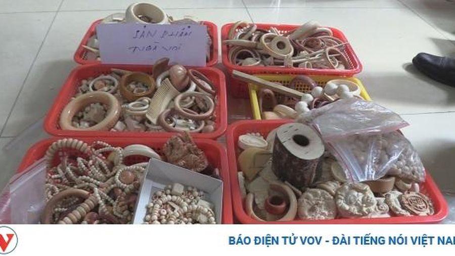 Bắt giữ đối tượng kinh doanh 18kg sản phẩm làm từ ngà voi