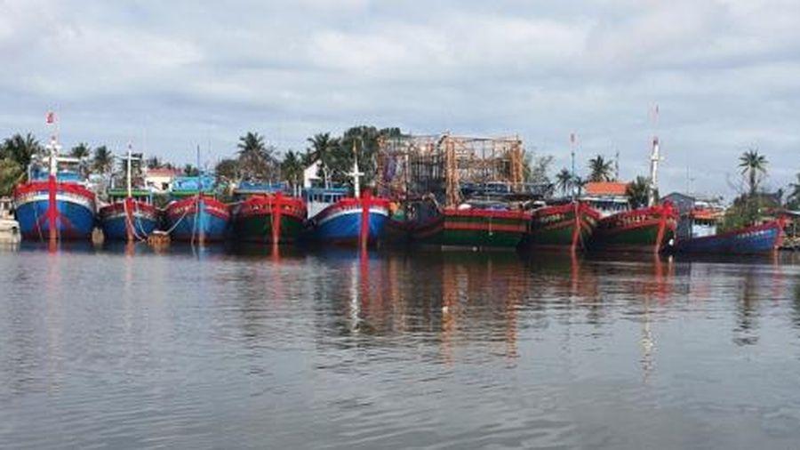 Sớm đầu tư, nâng cấp hạ tầng nghề cá ở Quảng Nam