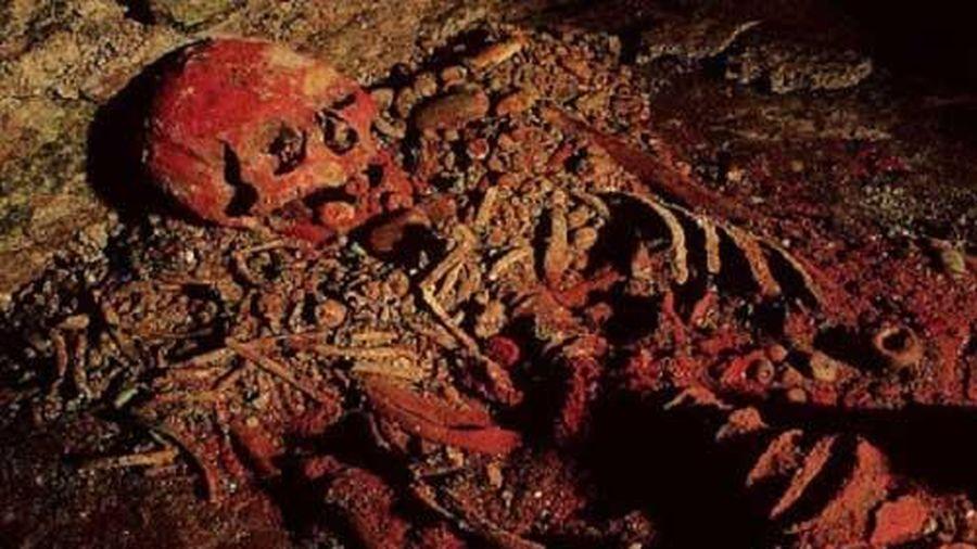 Tiết lộ gây sốc về bộ hài cốt của 'Nữ hoàng Đỏ' trong một ngôi mộ cổ 700 năm