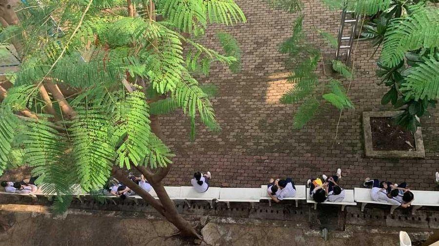 Nữ sinh ngồi trong sân trường gây sốt MXH: Tâm 'bất dính' giữa dòng đời 'vạn thính'