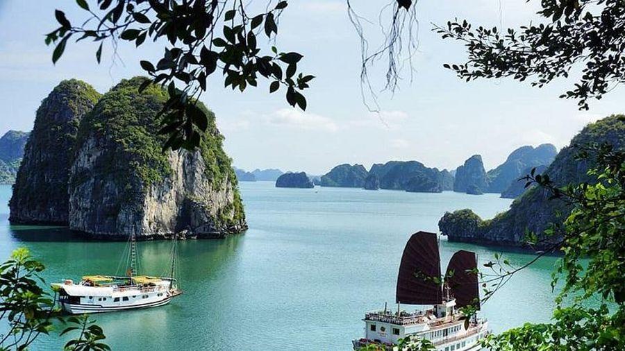 Vay gần 12 tỷ Yên cho dự án 'Thoát nước và xử lý nước thải TP Hạ Long'