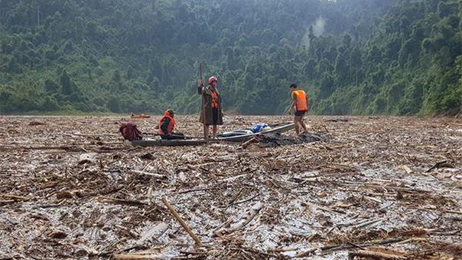 Dư luận phản ứng, Quảng Nam thu hồi quyết định cho doanh nghiệp thuê đất xây thủy điện