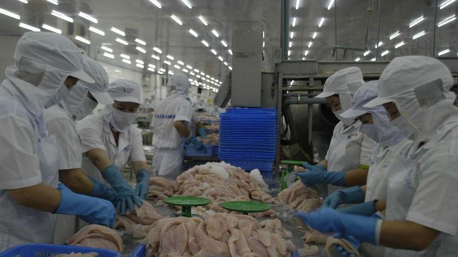 Trung Quốc tăng kiểm soát hàng thủy sản nhập khẩu, doanh nghiệp cá tra nên 'bình tĩnh'