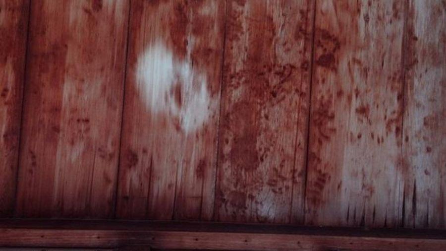 Bí ẩn về trần gỗ dính máu ở Kyoto