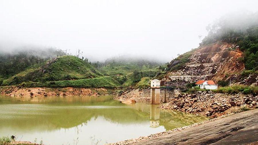 Rà soát các dự án thủy điện có chuyển mục đích sử dụng rừng
