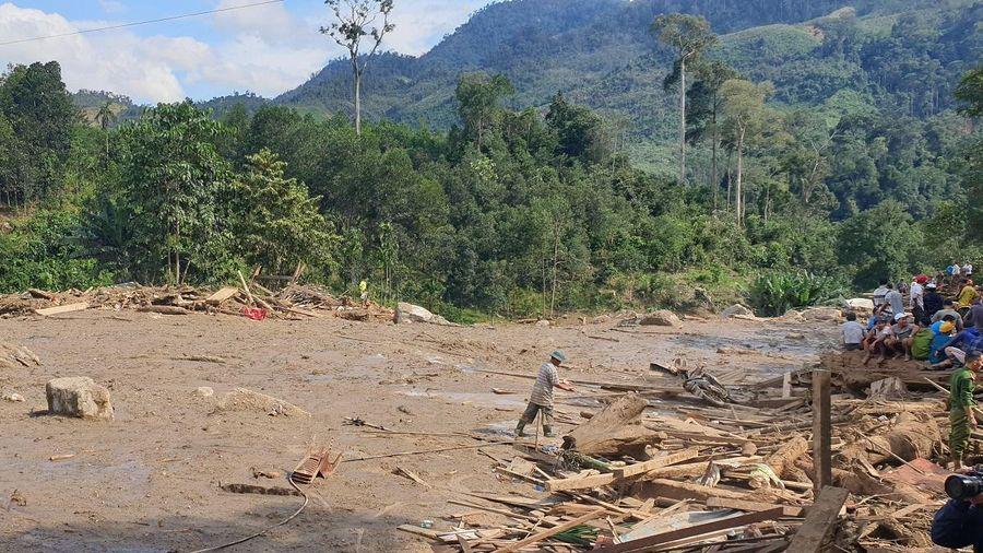 Quảng Nam cho thuê hơn 31.000m2 đất xây thủy điện: Chủ tịch tỉnh chỉ đạo thu hồi