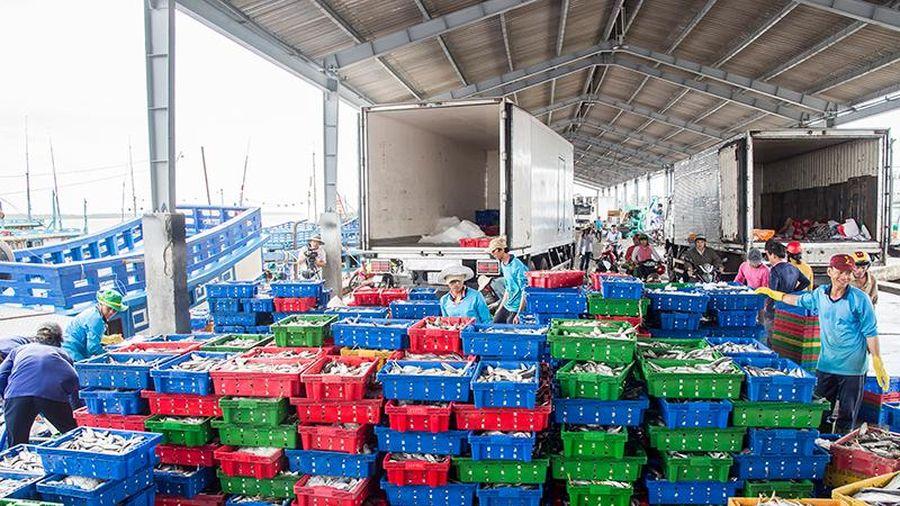 Sóc Trăng chú trọngphát triển kinh tế cảng biển
