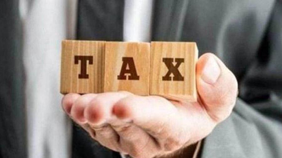 Cần có bộ phận chuyên trách, đủ thẩm quyền, năng lực quản lý thuế với doanh nghiệp lớn