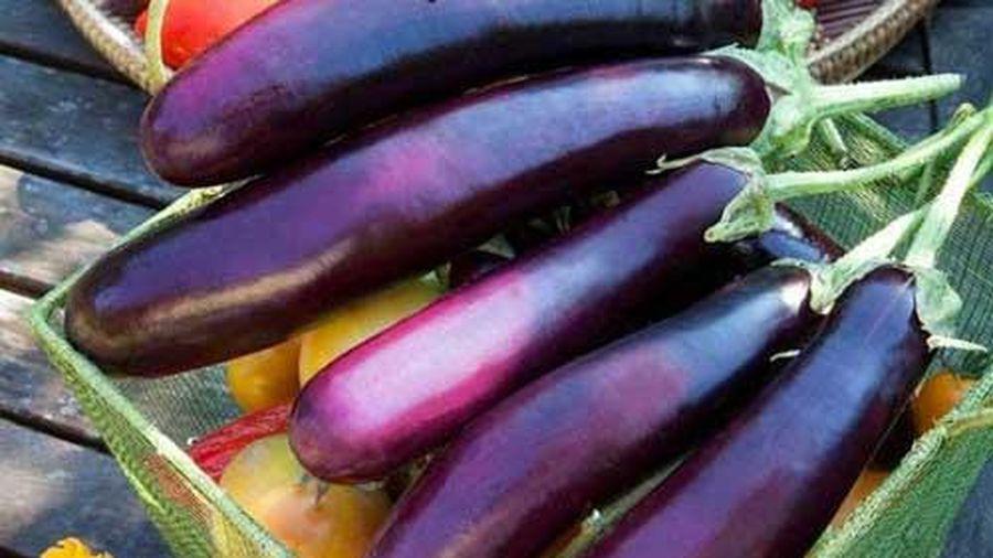 Cách chọn cà tím ngon, mềm, non và không bị đắng