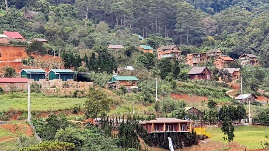 Xử lý dứt điểm các sai phạm tại 'làng biệt thự' trên đất lâm nghiệp
