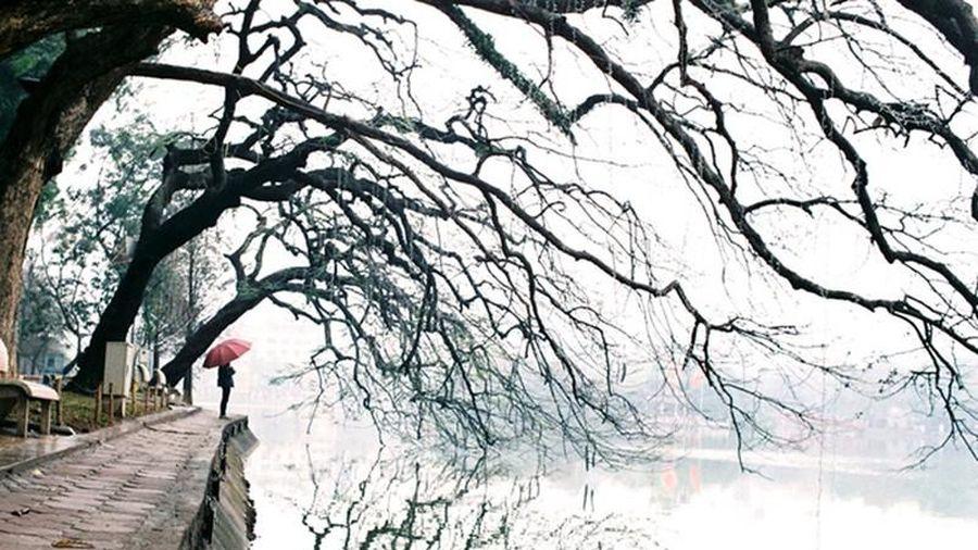 Miền Bắc trời trở rét, Hà Nội thấp nhất 16 độ C