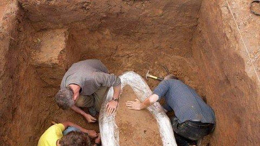 Khai quật kho tiền vàng cổ lớn nhất châu Âu
