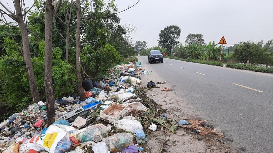 Lợi ích kép nhờ việc phân loại rác thải tại nguồn
