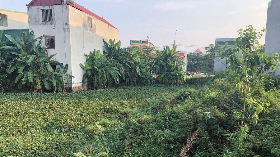 Vĩnh Tường (Vĩnh Phúc): Sẽ tổ chức cưỡng chế thu hồi đất thực hiện dự án Trung tâm thương mại và nhà ở Phúc Sơn tại xã Thượng Trưng