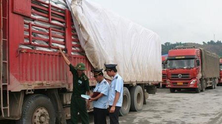 Chấm dứt hoạt động 2 đại lý làm thủ tục hải quan tại Lào Cai
