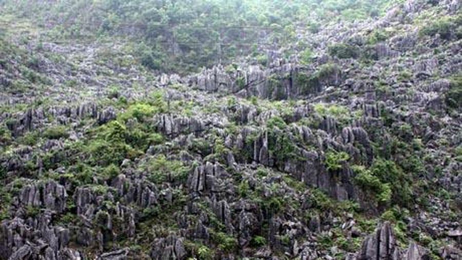 Kỷ niệm 10 năm Cao nguyên đá Đồng Văn gia nhập Công viên địa chất toàn cầu