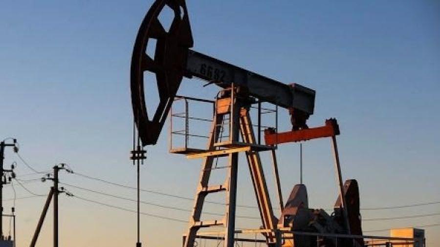 Giá xăng dầu hôm nay 29/11: Duy trì đà tăng mạnh