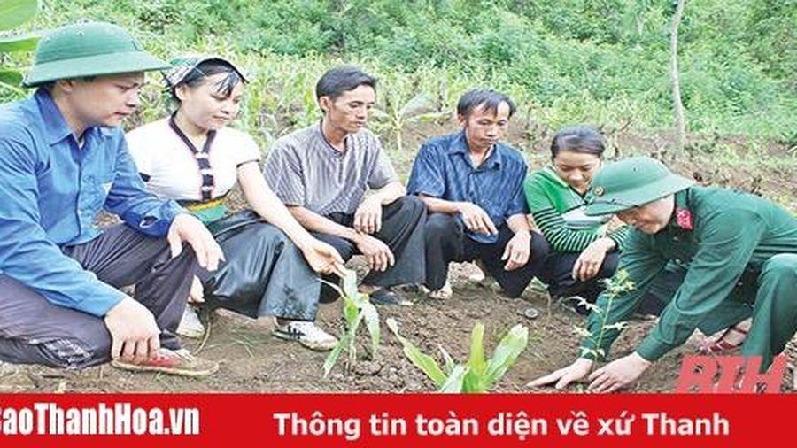Đẩy mạnh trồng, chăm sóc, bảo vệ rừng
