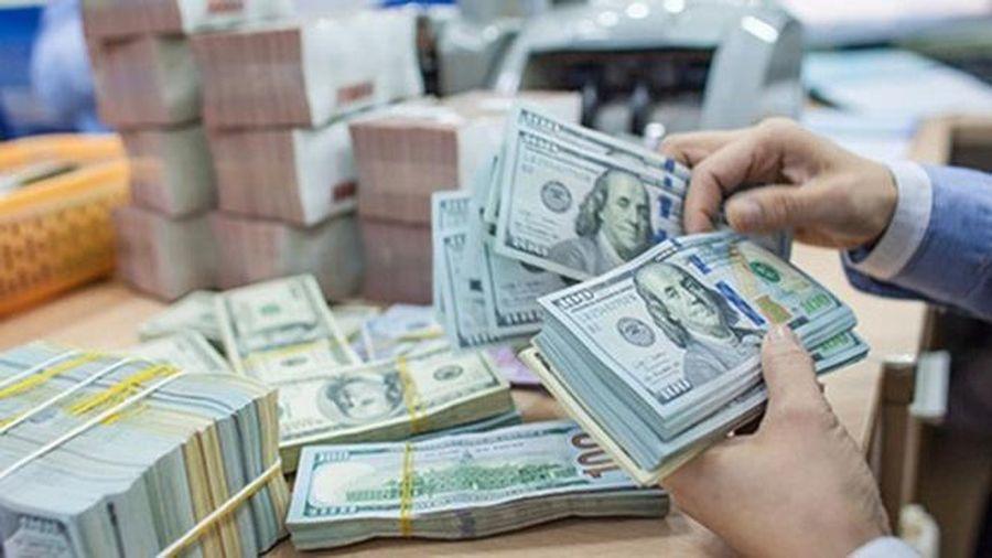 Vốn đầu tư nước ngoài giảm 16,9%