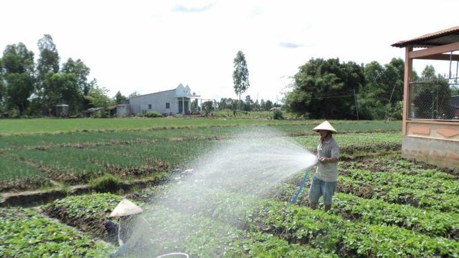 Kiên Giang: Chuyển đổi phù hợp từng tiểu vùng sinh thái