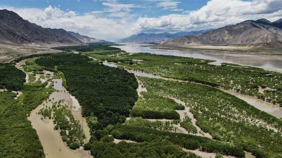 Trung Quốc vẫn quyết phát triển dự án thủy điện ở Tây Tạng