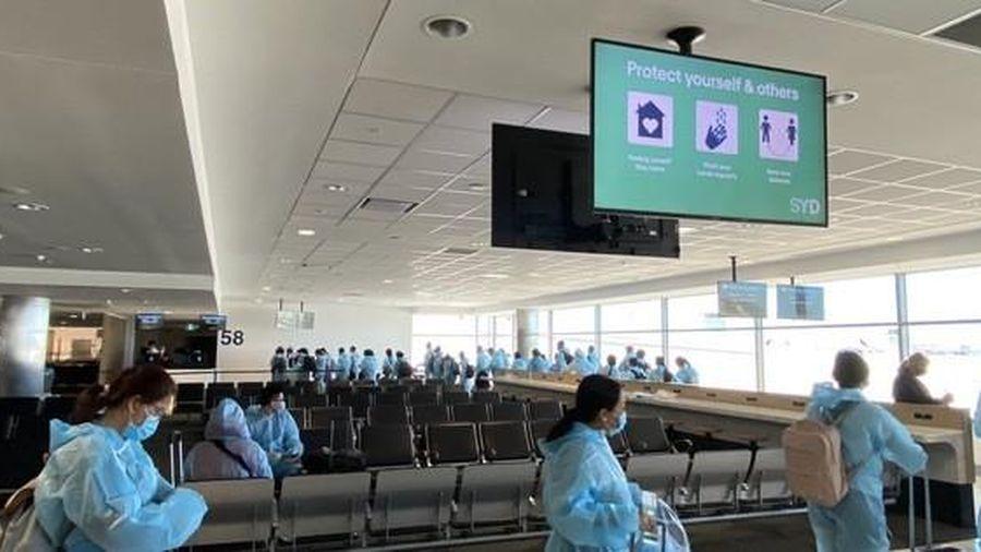 Sắp tổ chức các chuyến bay trọn gói đưa người Việt về nước