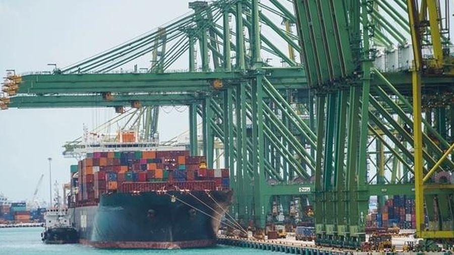 Thiếu container ở châu Á đẩy chi phí vận chuyển lên cao