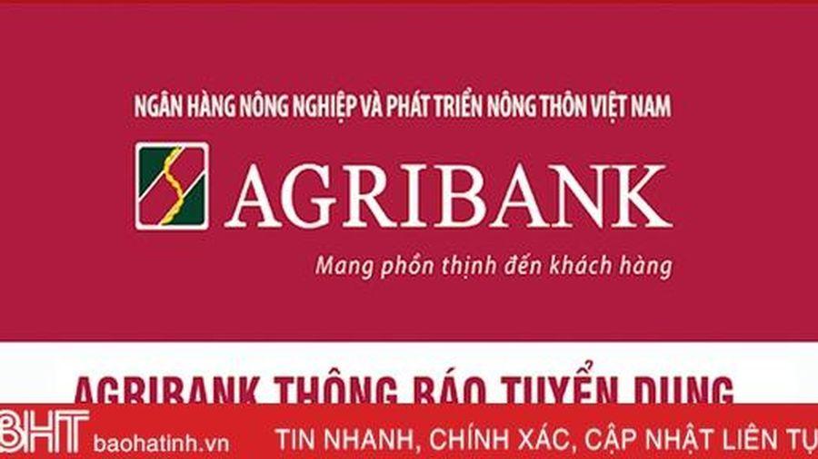 Agribank chi nhánh Hà Tĩnh II tuyển dụng 5 lao động