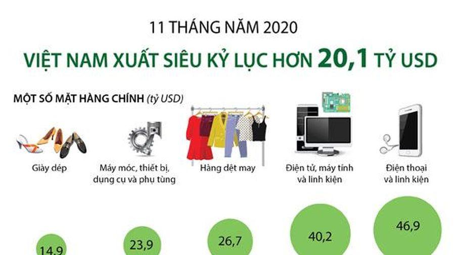 Việt Nam xuất siêu kỷ lục hơn 20,1 tỷ USD trong 11 tháng năm 2020