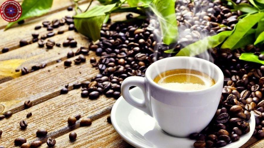 Giá cà phê hôm nay 30/11: Giữ ổn định ở mốc 33 triệu đồng/tấn