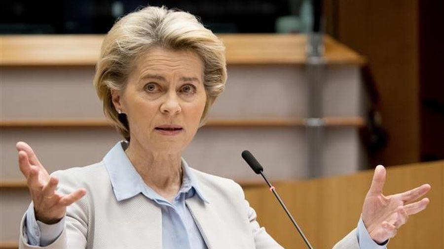 EU tìm kiếm giải pháp phục hồi khu vực Schengen sau dịch COVID-19